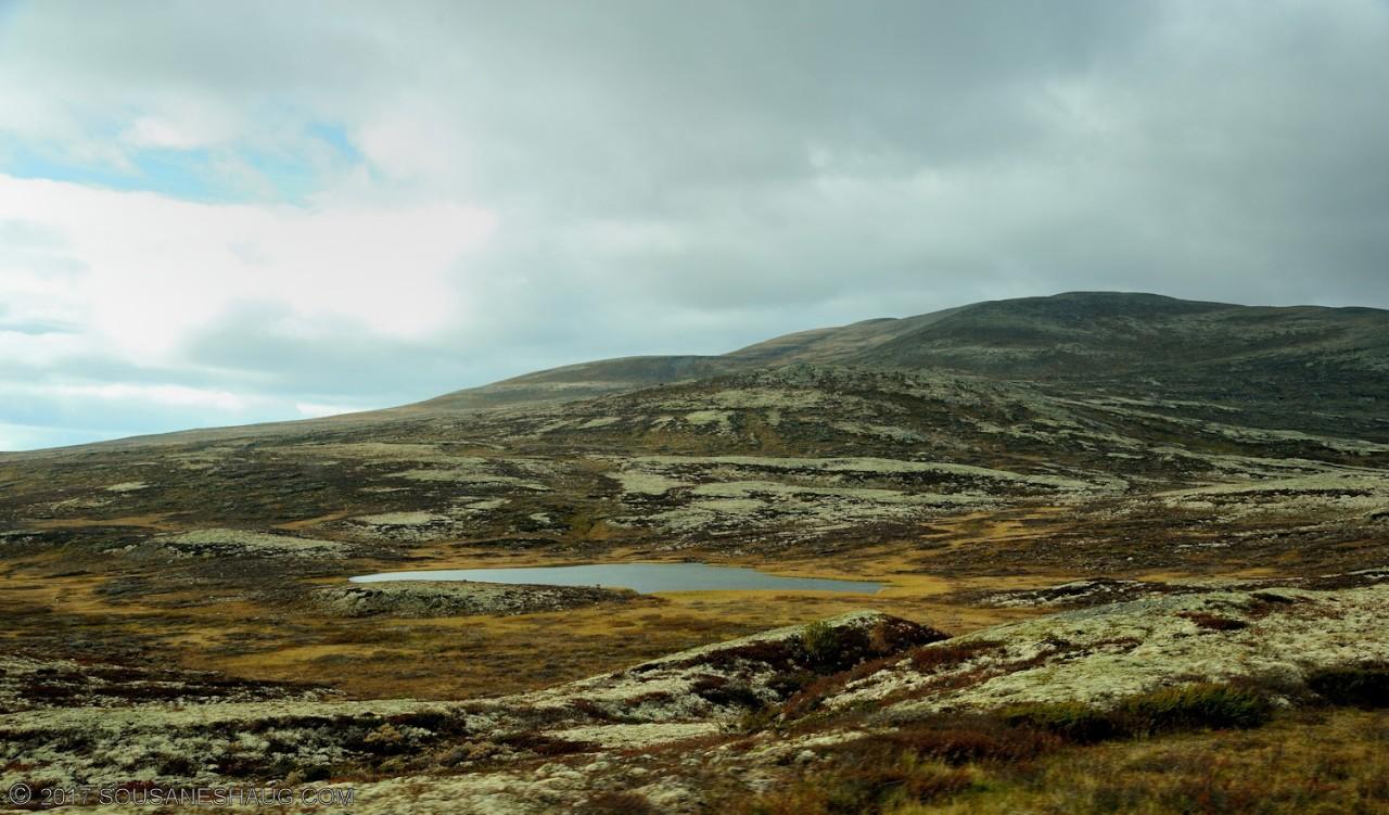 Einundalen-Hedmark-Norway-096