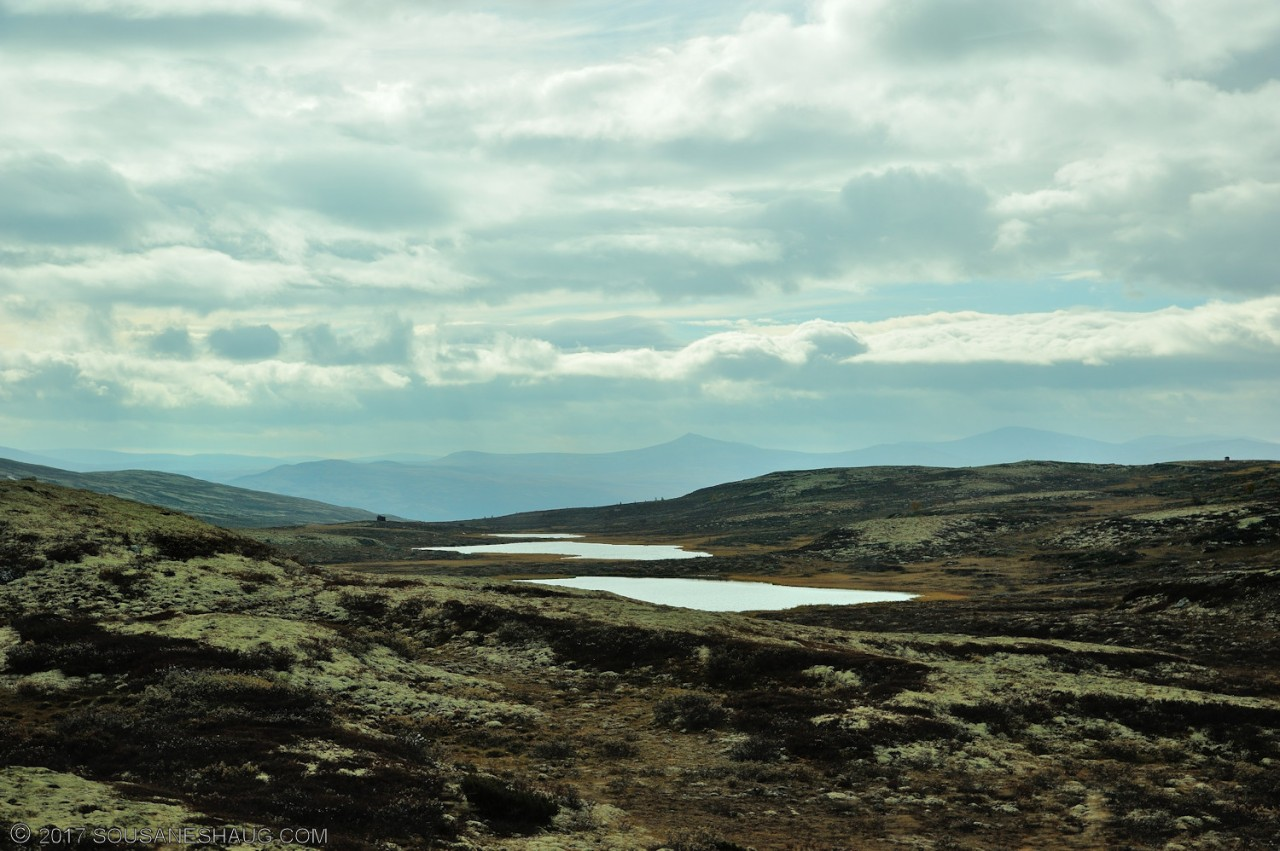 Einundalen-Hedmark-Norway-097