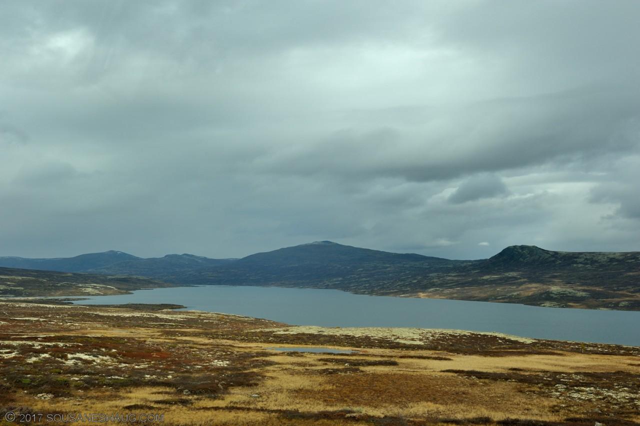 Einundalen-Hedmark-Norway-100