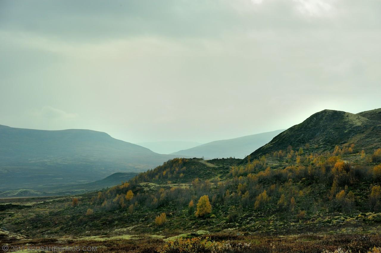 Einundalen-Hedmark-Norway-101