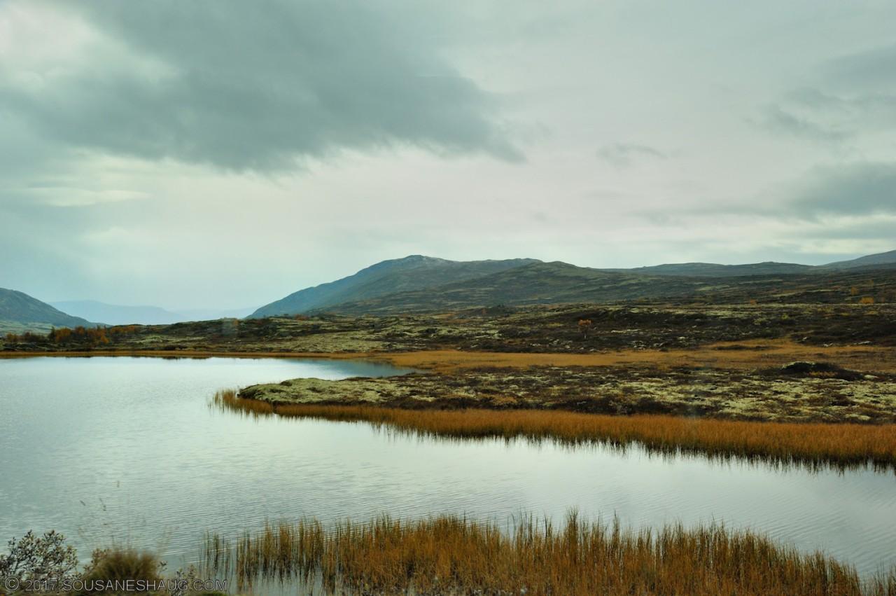 Einundalen-Hedmark-Norway-103
