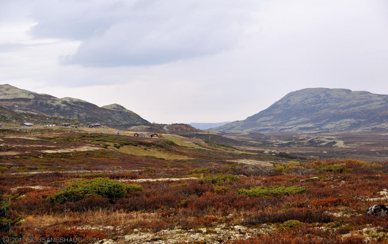 Einundalen-Hedmark-Norway-107