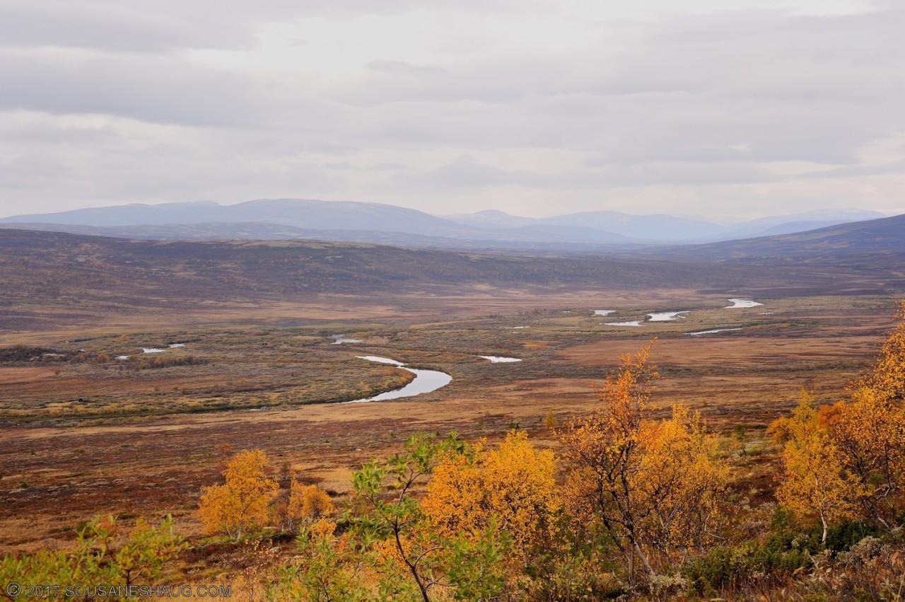 Einundalen-Hedmark-Norway-109
