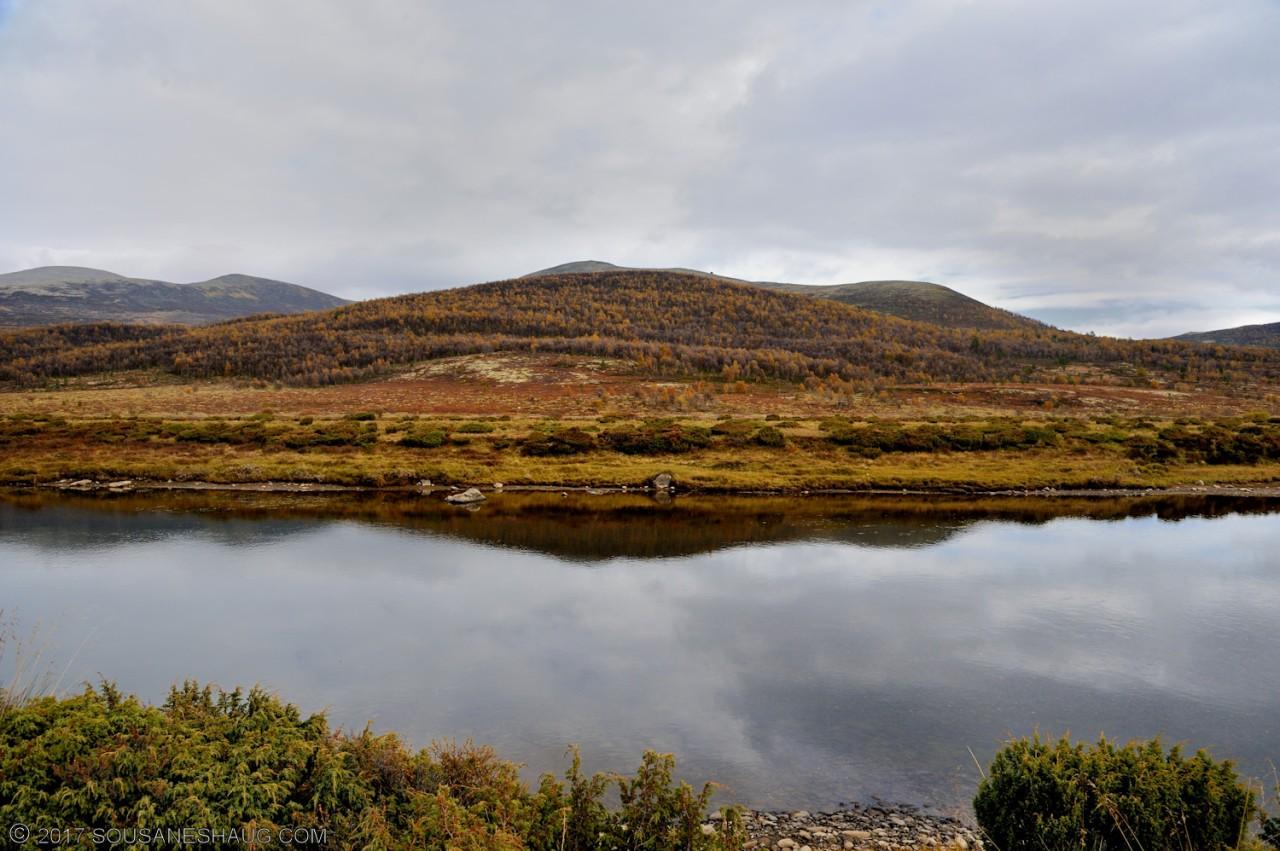 Einundalen-Hedmark-Norway-114