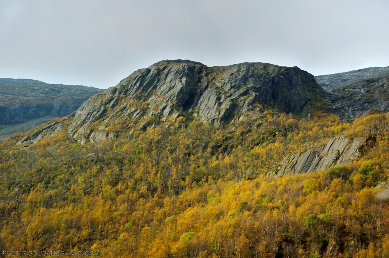 Einundalen-Hedmark-Norway-116
