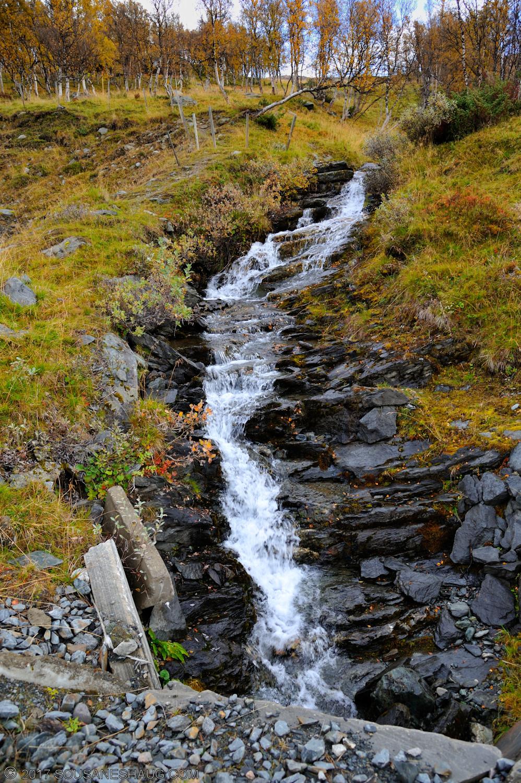 Einundalen-Hedmark-Norway-118
