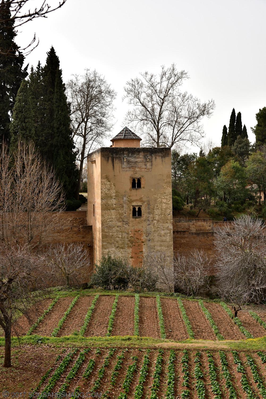 Generalife-Granada-Spain-00167_01