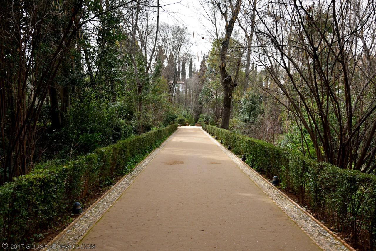 Generalife-Granada-Spain-00168_02