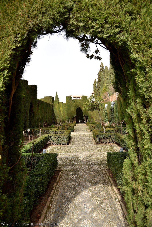Generalife-Granada-Spain-00172_01