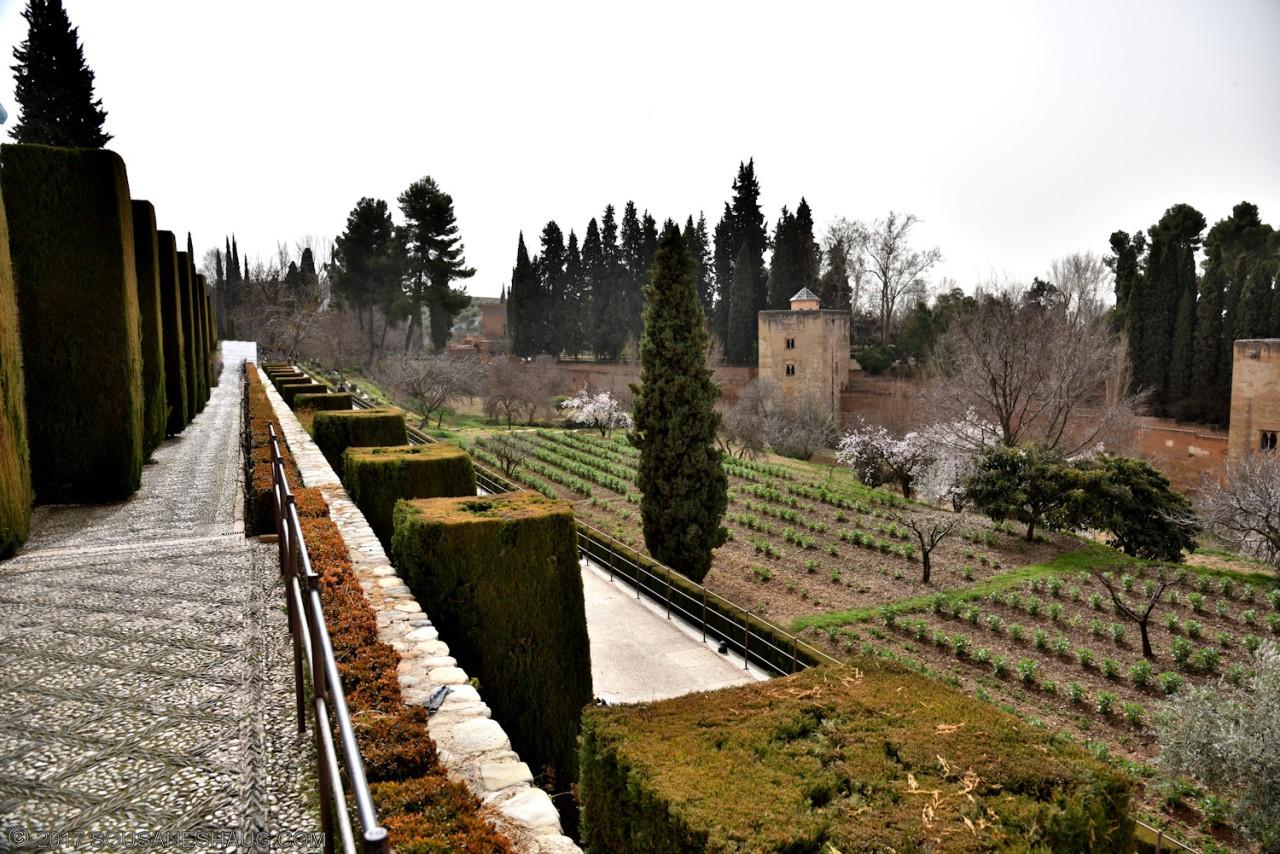 Generalife-Granada-Spain-00174_01