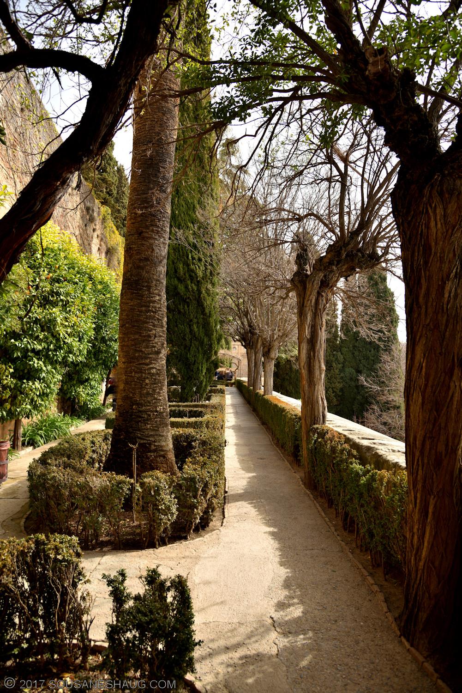 Generalife-Granada-Spain-00177