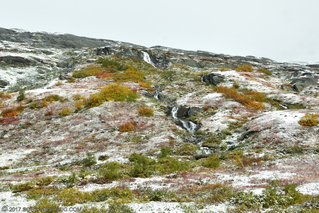 Snow-autumn-norway-0208