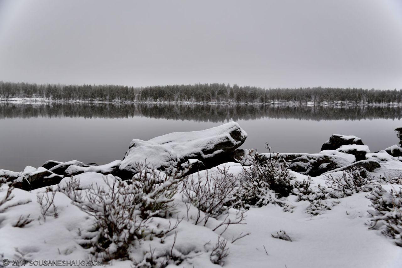 Melancholy-Norway-0172