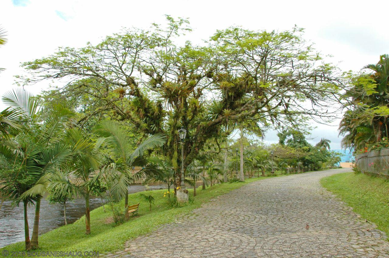 Curitiba - Paranagua 0464