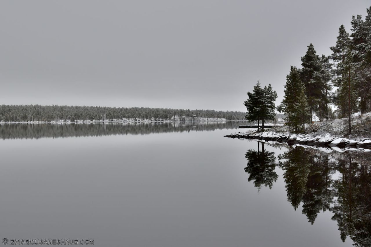 Reflections-in-water-0514