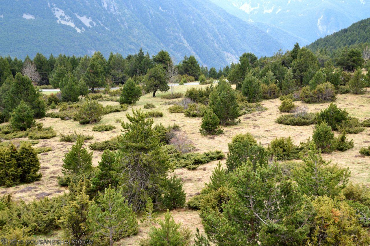 Andorra-0967