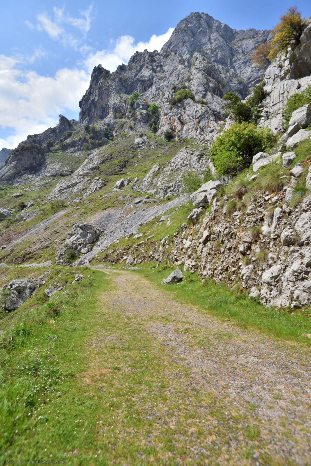 Picos de Europa-Spain-0138
