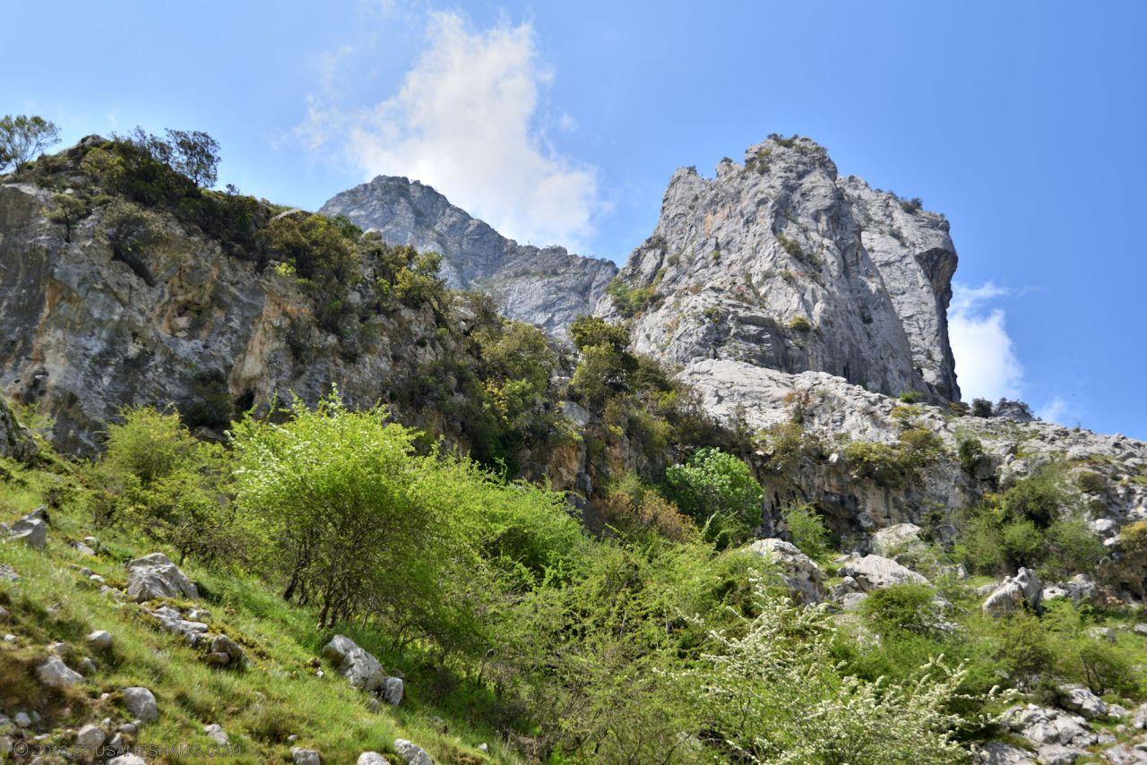 Picos de Europa-Spain-0140