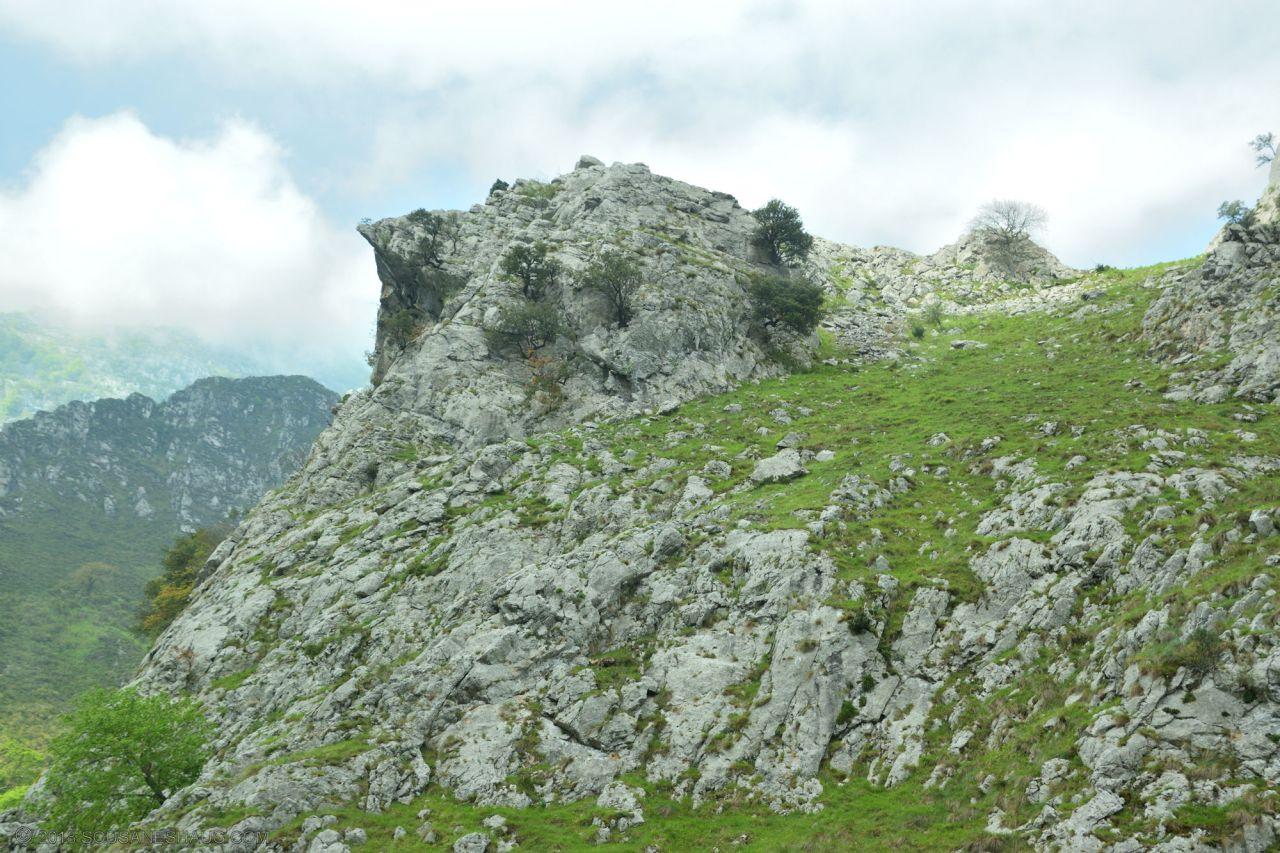 Picos de Europa-Spain-0142