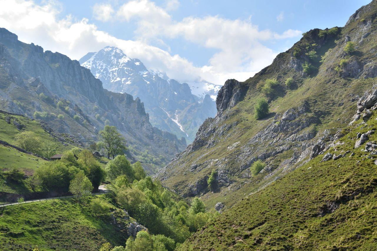 Picos de Europa-Spain-0148