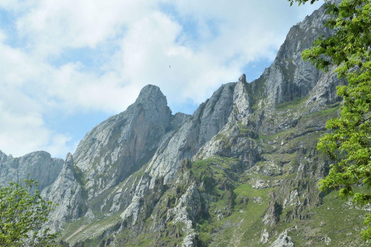 Picos de Europa-Spain-0169